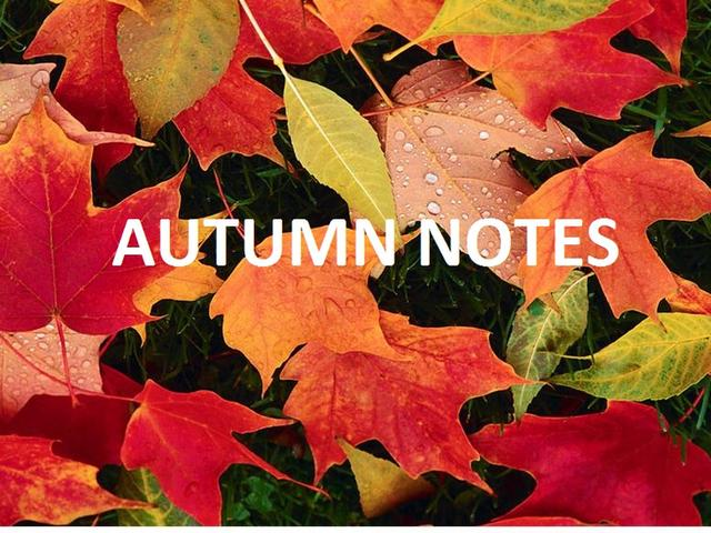 Autumn Notes Concert Hull