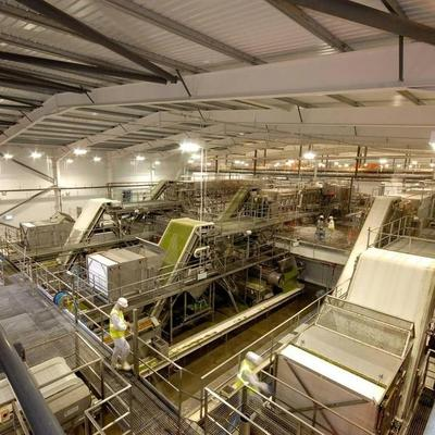 Birds Eye Peas Process Plant